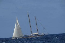 Navegando a la sostenibilidad